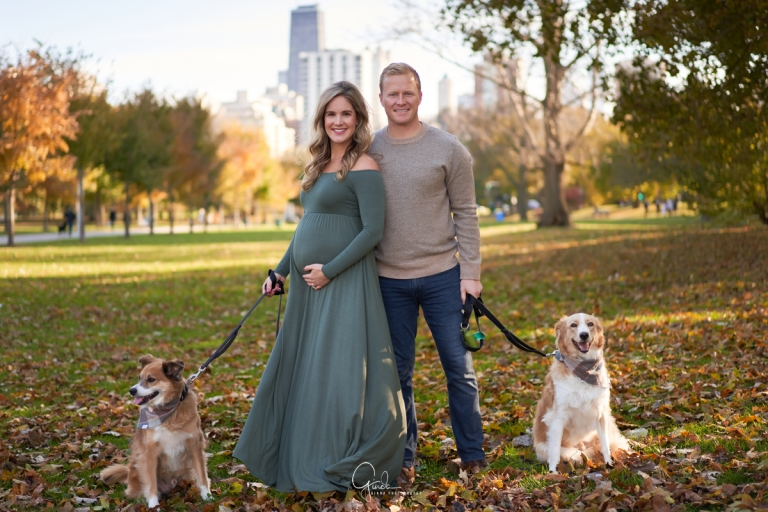 expecting couple holding their two dogs on leash during their maternity session in chicago